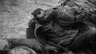 Страшные кадры фашистских зверств  Никто не забыт, ничто не забыто!
