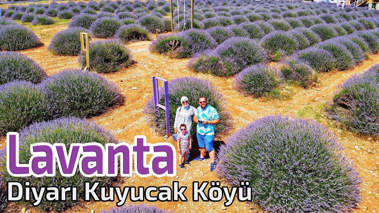 Download Lavanta Başkenti Isparta Kuyucak Köyü   VLOG