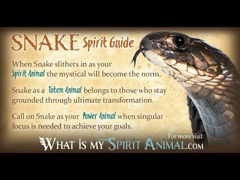 Snake Power Animal Symbol Of Death Rebirth Eternity Mysteries Of Life Psychic Energy #TRANSFORMATION