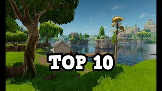 FORTNITE - Battle Royale SOLO Top 10 Gameplay (I WIN)
