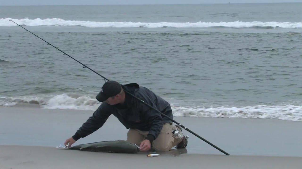 42 Inch Striped B Top Water Fishing Off Crane Beach Ipswich Ma 8 16 10 Fish On You