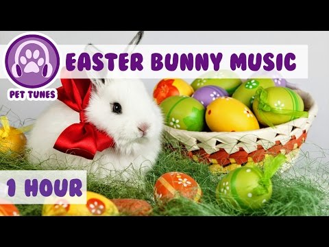 1 HOUR Relaxing Music for Easter Bunnies! Easter Music for Rabbits! Happy Easter from Pet Tunes!