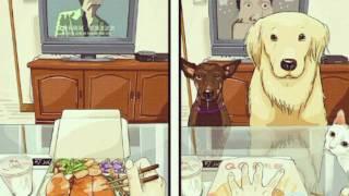Как меняется жизнь если завел собаку