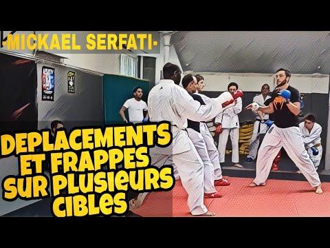 Exercice de Déplacements et Frappes sur Plusieurs Cibles Karate Kumite par Mickael Serfati