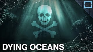 Is It Too Late To Save The Oceans?