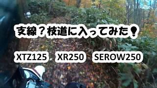 わき道に入ってみた・・・笑  XTZ125 thumbnail