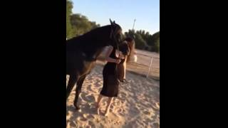 سارة والحصان جمانة