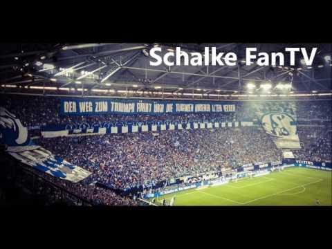 Schalke 04 Lieder