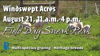 Field Day Sneak Peek: Windswept Acres, August 21