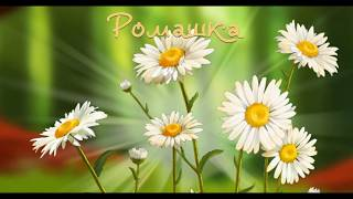 Учим растения. Учим цветы с ребенком. Полевые цветы. Развивающий мультик для детей