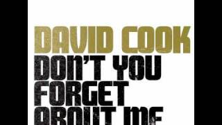 Watch David Cook Dont You forget About Me video