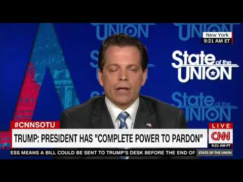 Scaramucci to Anti Trump Harvard Law Professor  I Got A  In Your Class   Law News