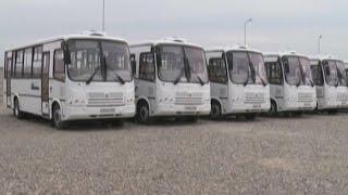 В Краснодаре появились новые современные автобусы