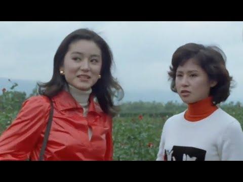 瓊瑤電影:不一樣的愛  (林青霞/秦祥林)  (1080P數位修復版)