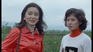 電影:不一樣的愛  (林青霞/秦祥林)  (1080P數位修復版) thumbnail