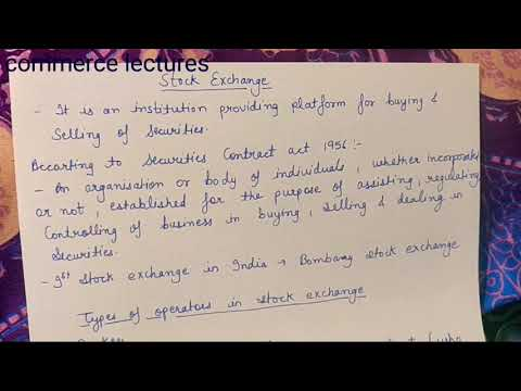 Stock Exchange Meaning And Types Of Operators In Stock Exchange (class 12)