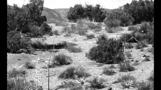 The Beast Of Yucca Flats trailer (1961)