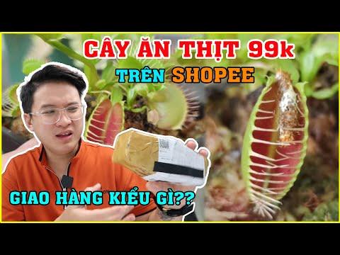 Thử mua Cây Ăn Thịt trên SHOPEE giá 99k. Cái kết Không Thể Tin Được | MUA HÀNG ONLINE