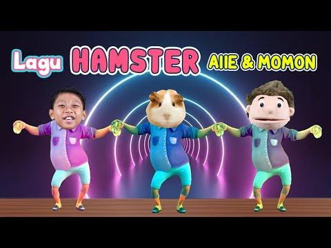 Download LAGU HAMSTER MUTER-MUTER I ALLE & MOMON