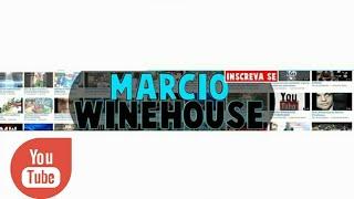 Falando de Youtubers com Marcio Winehouse Foco News