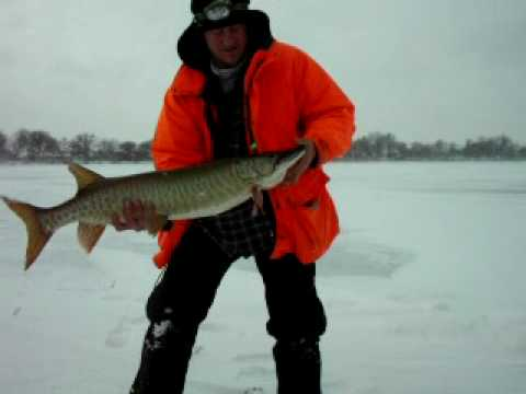Binder lands another great pike youtube for Iowa out of state fishing license