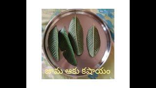 Jaama aaku kashayam Telugu or Guava leaf extract or jama aaku kashayam