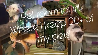 Pet Room Tour! 20+ Of My Animals