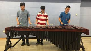 Shape Of You On Marimba