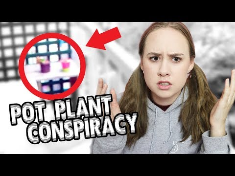 A Ghost Stole My Pot Plant *CONSPIRACY*