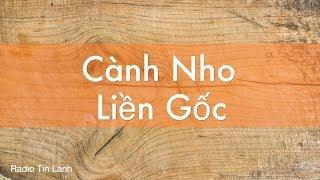 Cành Nho Liền Gốc - Phát Thanh Tin Lành - Mục sư Nguyễn Thỉ