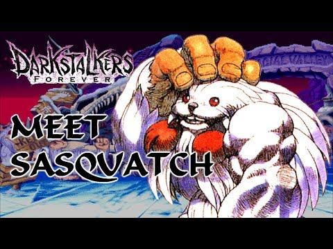 Meet the Darkstalkers: Sasquatch - The Nostalgic Gamer