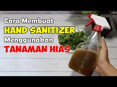 sangat-mudah!-cara-membuat-hand-sanitizer-sendiri-menggunakan-tanaman-depan-rumah-|-sehat-tube