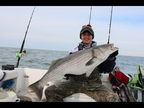 Chesapeake bay striper fishing youtube for Striper fishing chesapeake bay