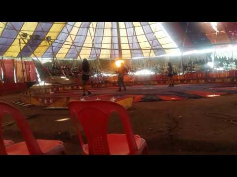 Very nice circus