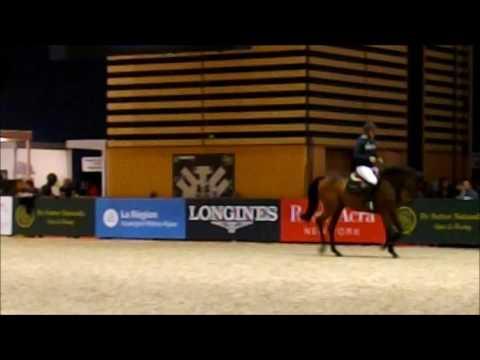 Paddock Training - Jeroen Dubbeldam, Zenith - Lyon 2016