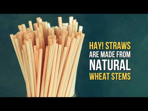 The Most Eco-friendly Drinking Straws- 100% biodegradable and made from natural wheat.