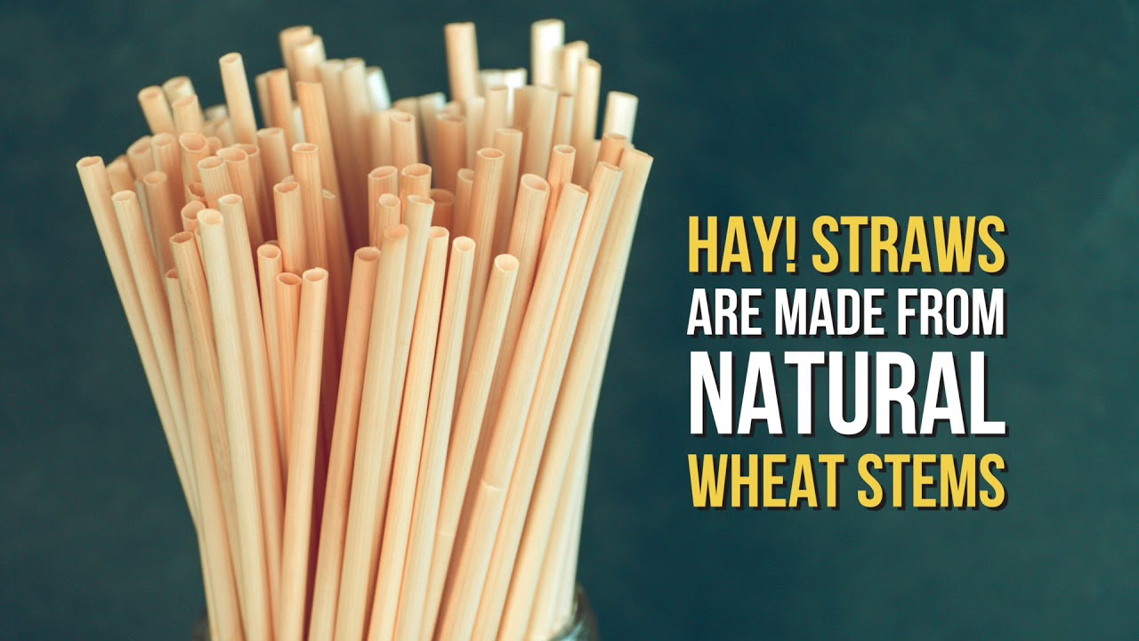 a picture of natural biodegradable hay straws