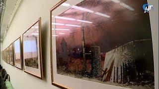Молодежная Библиотека «Читай-город» приглашает на выставку фотографий Владимира Щелканова
