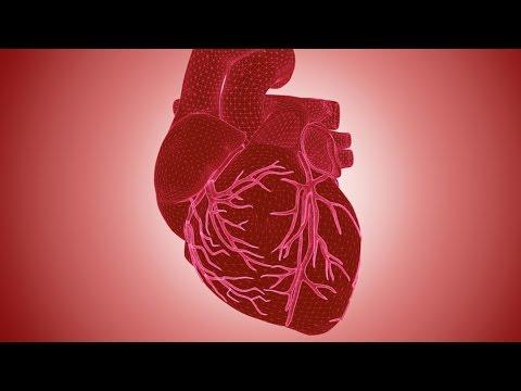 The Heart: An Introduction - Professor Martin Elliott
