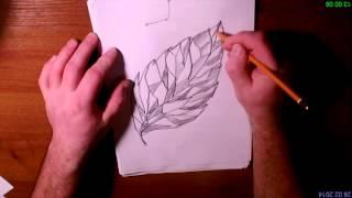 Обзор техник рисования карандашом №1 (начало начал)