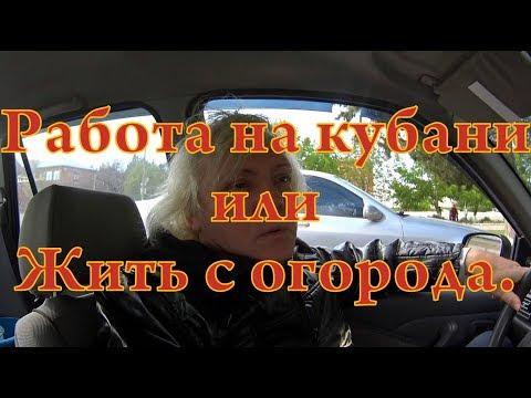 Работа на Кубани или Жить с огорода))