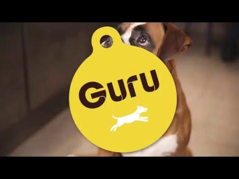 Guru Pet Food Feeding Guide