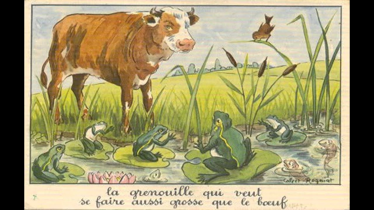 La grenouille qui se veut faire aussi grosse que le boeuf - Image la grenouille et le boeuf ...
