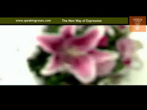 The Un-Franchise, Un-Business Opportunity, Licensee Opportunity Speaking Roses.flv