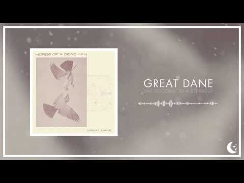 Great Dane - Say Goodbye To A Stranger