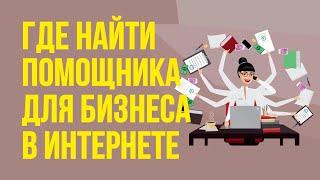 Где найти помощника для бизнеса в интернете. Как найти фрилансера для успешной работы! | Гришечкин