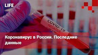 Коронавирус в России. Последние данные