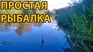 Рыбалка на поплавок 7 сентября 2021 на реке Медведица