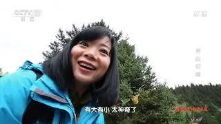 《地理中国》 20191002 自然奇景·神山幻境| CCTV科教