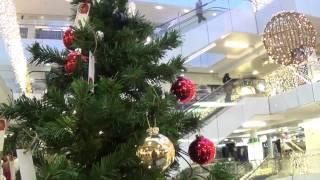 10 joulukuusta